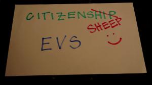 EVS sheep